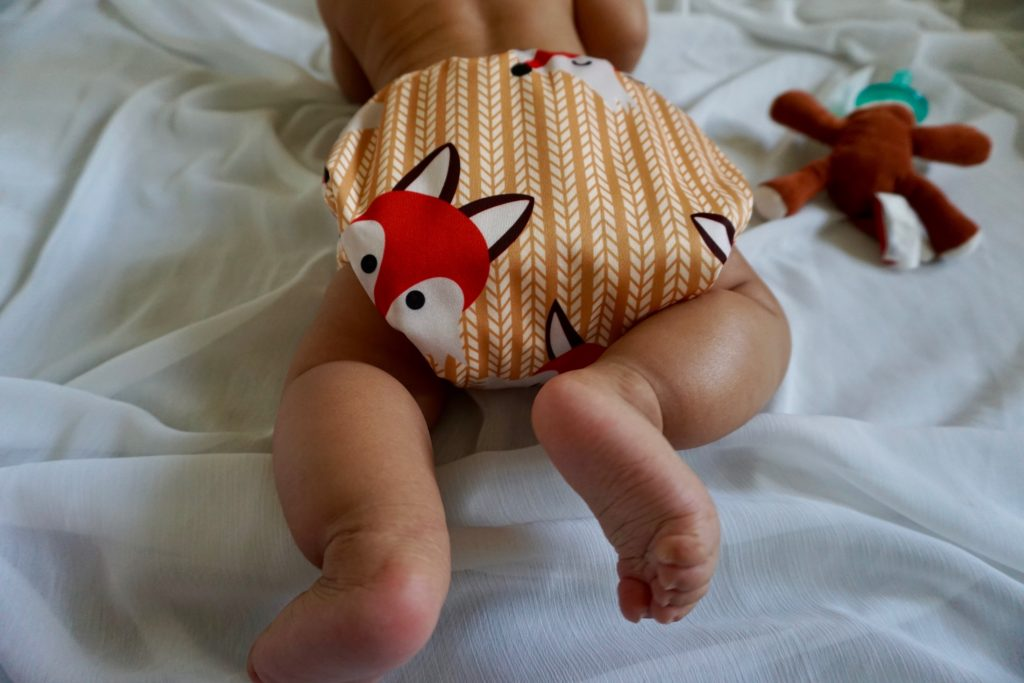 Cloth Diaper Style: Alva AIO Fox Print